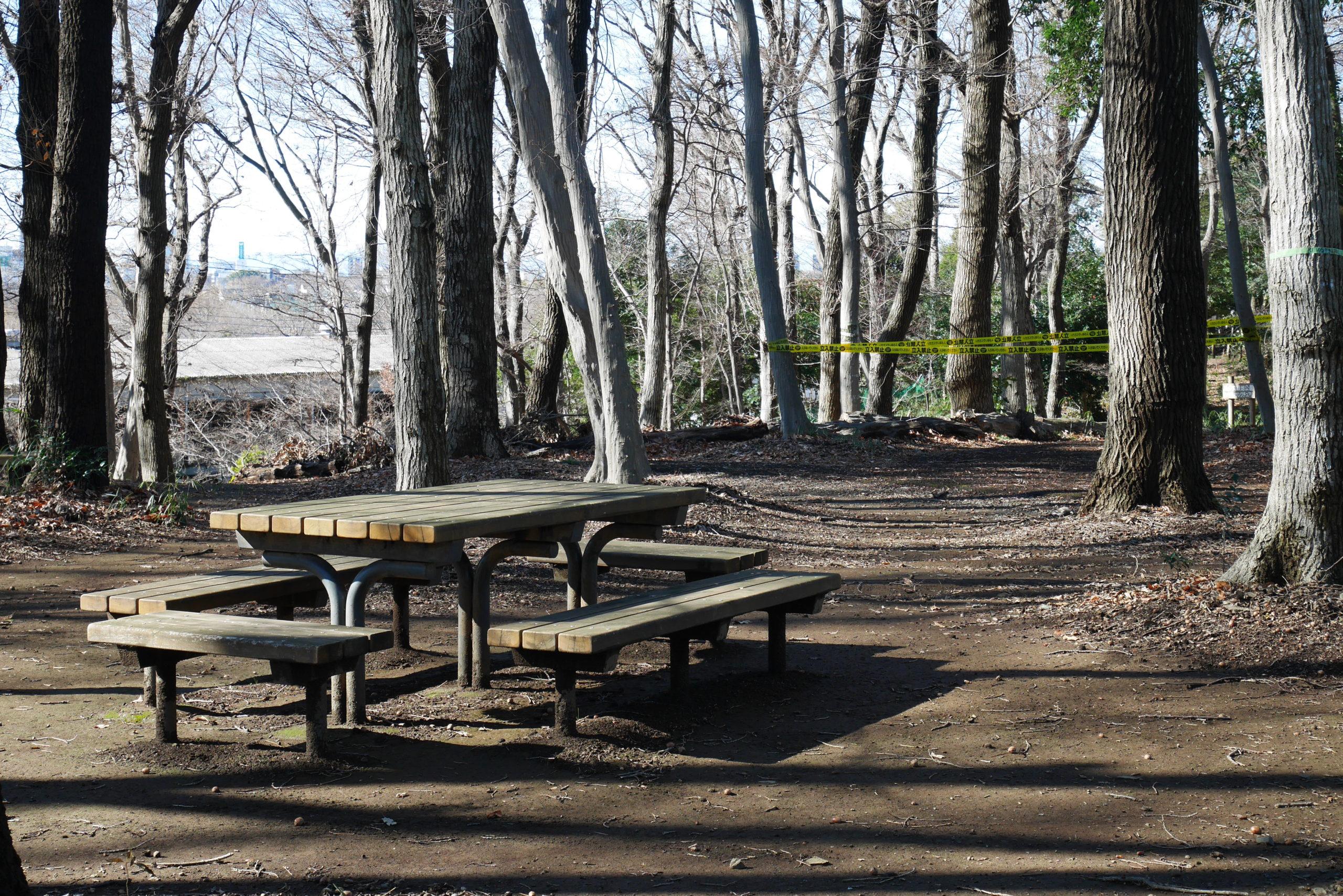 見沼区南中丸緑地公園