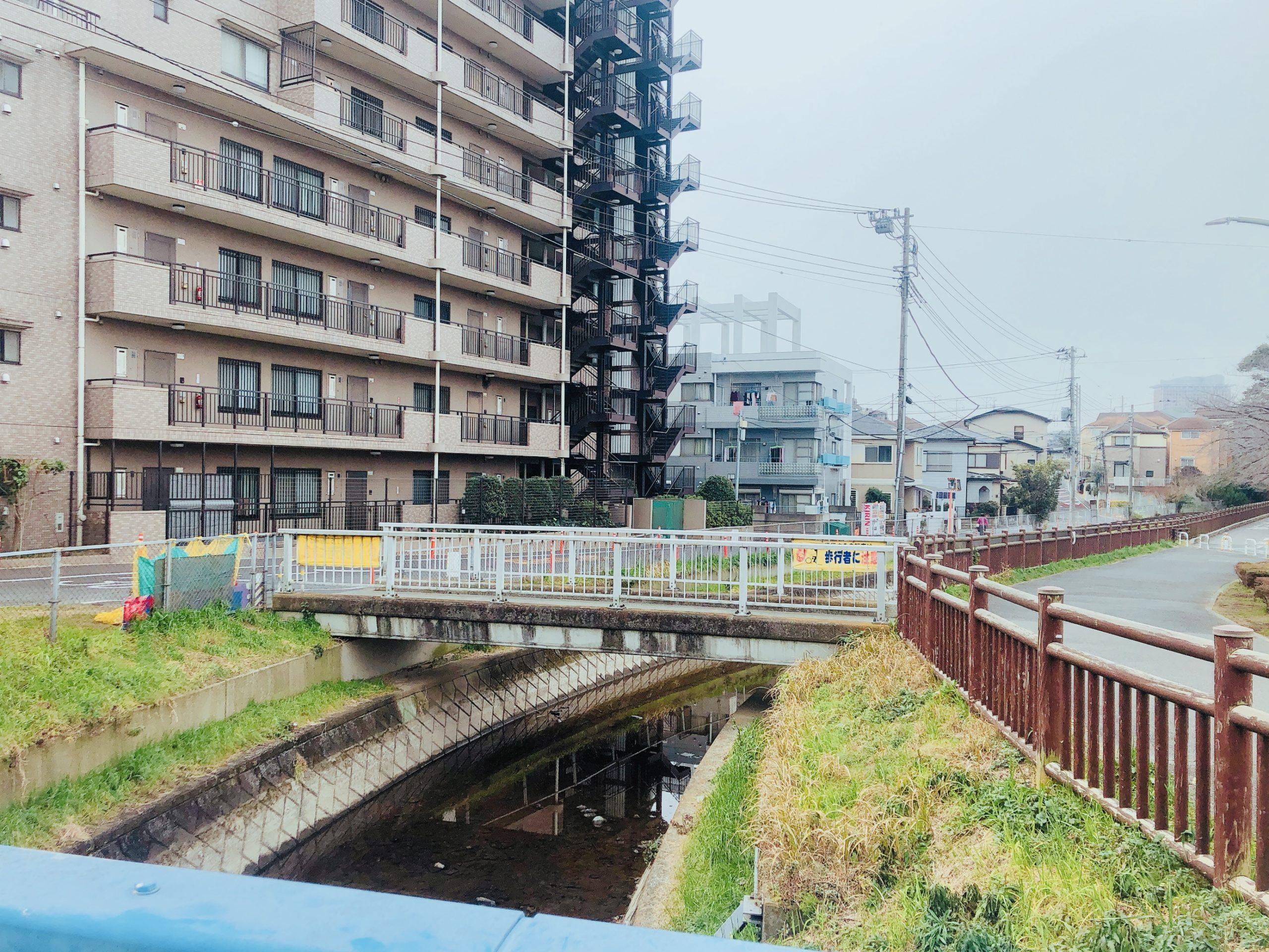 さいたま市浦和区大原 見沼代用水沿いの景色