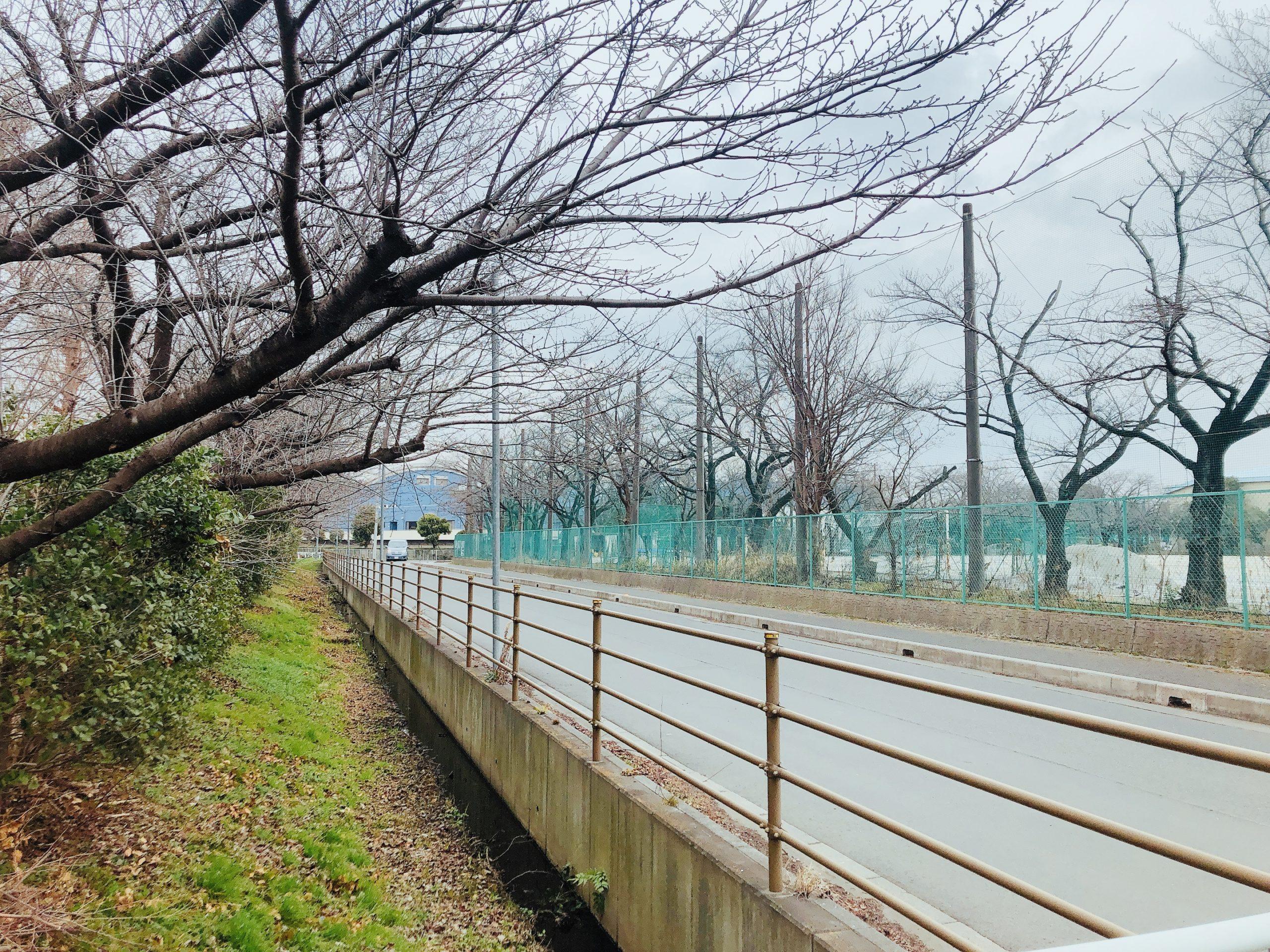 浦和区大原サッカー場横