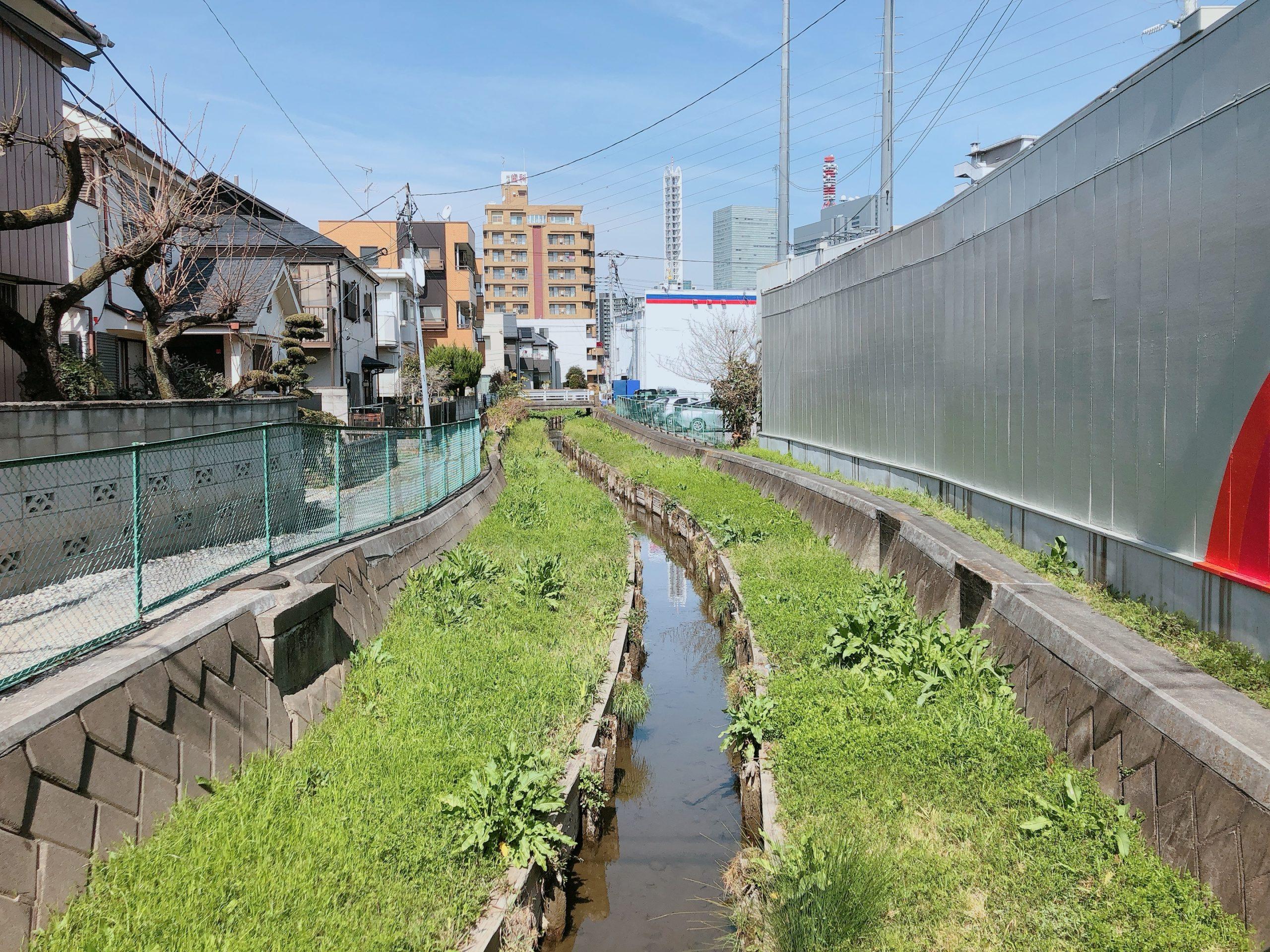 高沼用水路(こうぬまようすいろ) 中央区下落合