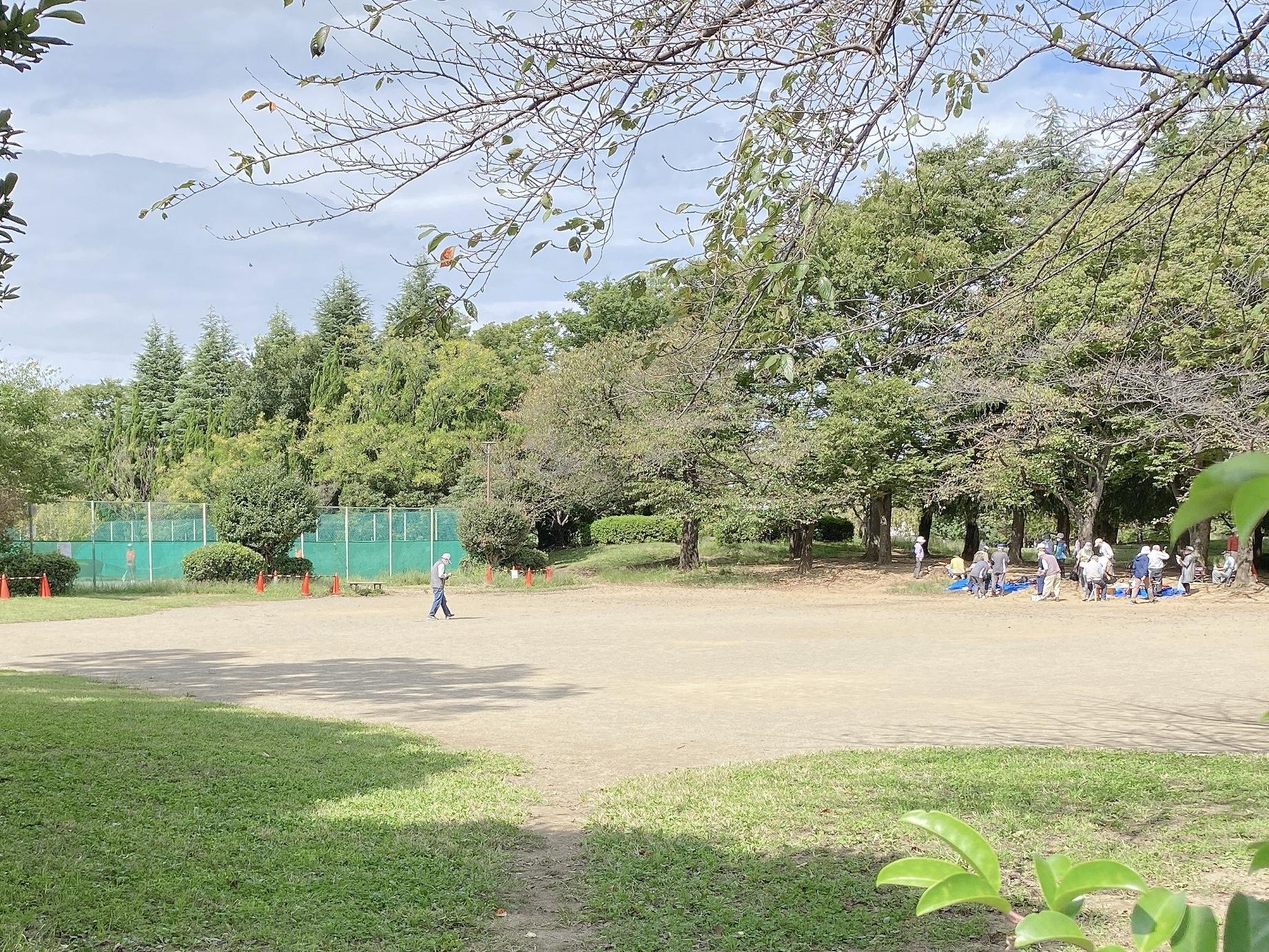 中央区八王子 八王子公園