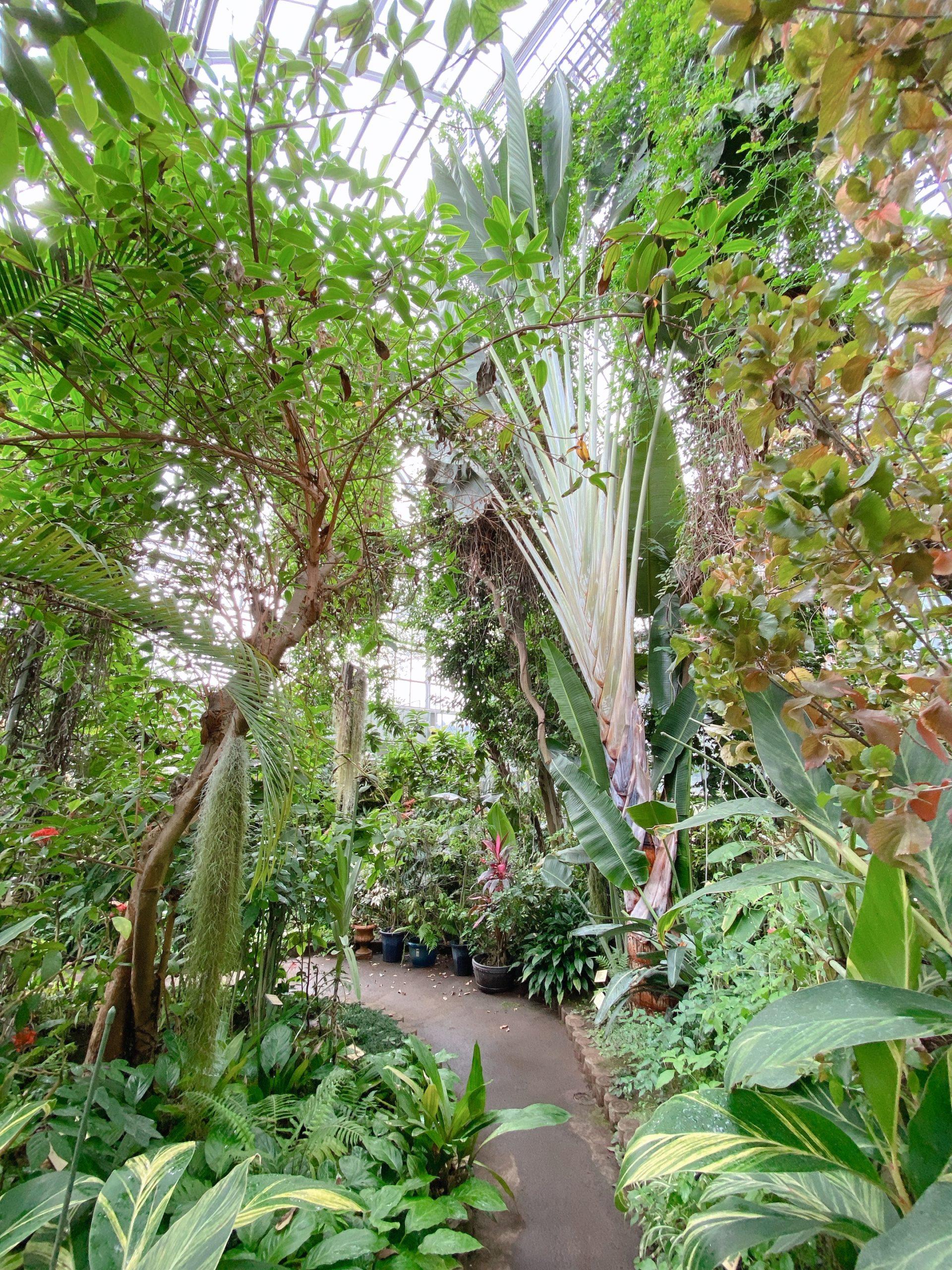 さいたま市緑区 さいたま市園芸植物園